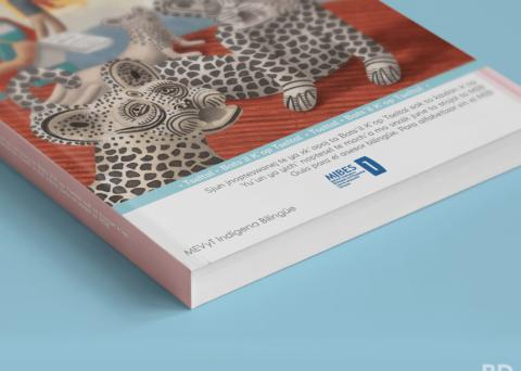 Libro INEA en lengua tseltal